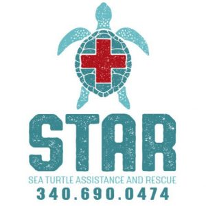 Sea Turtle Assistance and Rescue - St. Croix