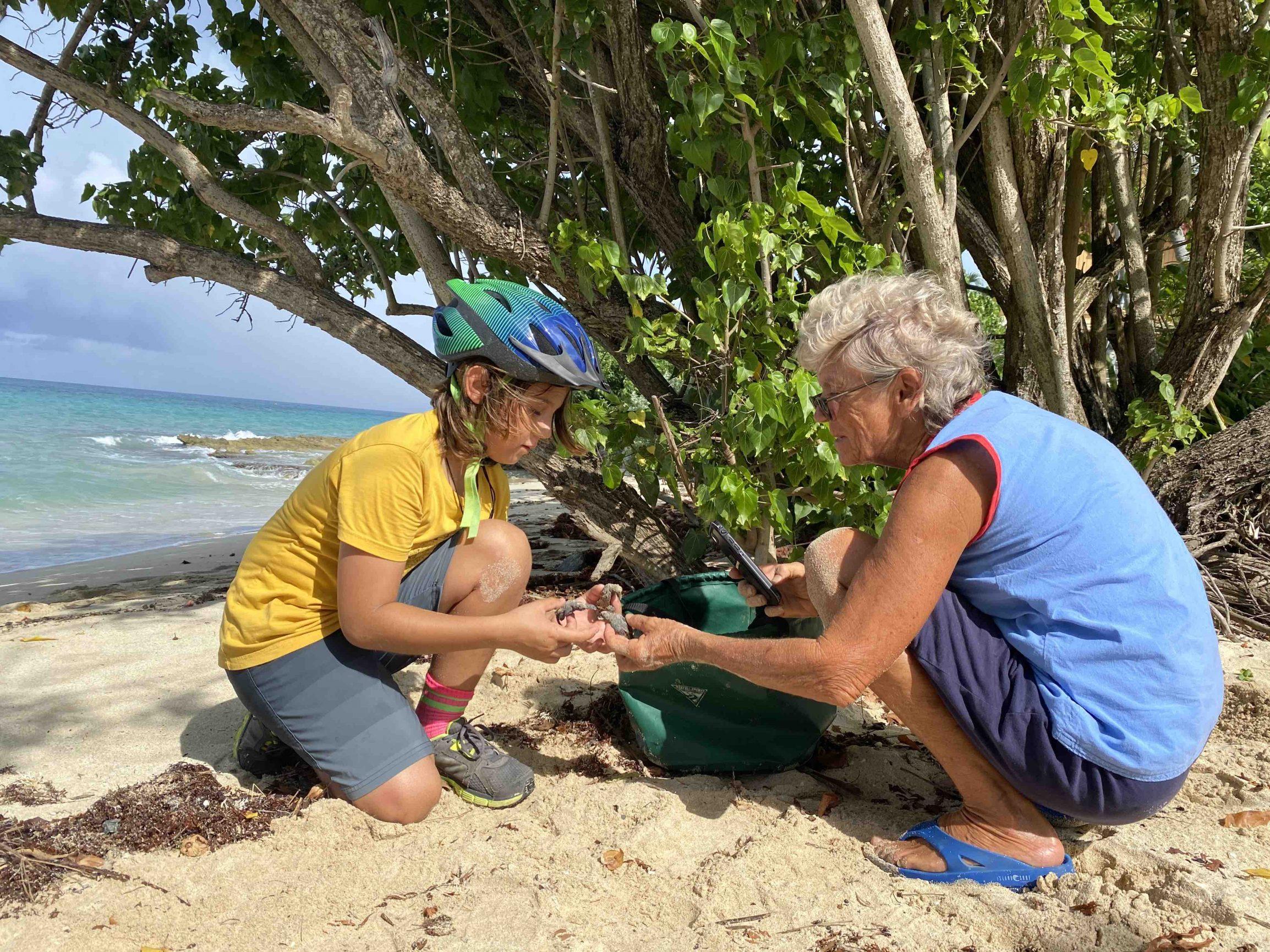 STAR-turtle-rescue-St-Croix